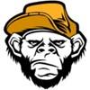 Bad Monkeys - bim