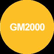 GM2000 - bim