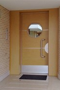 Entrance door - D03 - bim